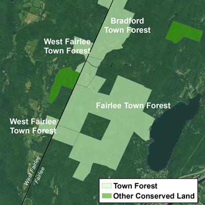 David Capen: Inventory of Town Forests in Vermont