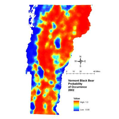 Therese Donovan: Predicting Impacts of Housing Density Changes on Black Bear Occurrence