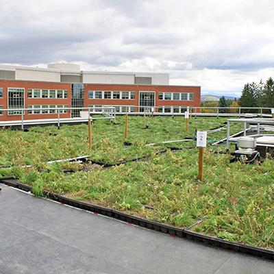 Gary Hawley: Green Roof Reduces Stormwater Discharge and Mediates Temperatures in Northern Forest Region
