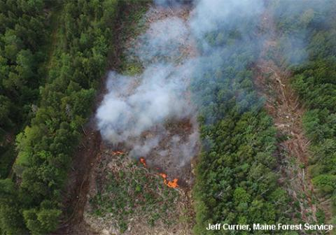Aerial view of forest with strip patches of harvesting and a fire burning