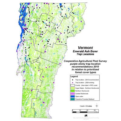 vermonts non timber forest products essay Hunting recreation (other than hunting) to graze/pasture livestock timber production to cultivate/collect non-timber forest products other (please specify): b have you leased or collected money for allowing people to use the woodland that you own in vermont in the.