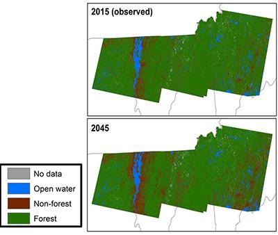 Jennifer Pontius: Impacts and Future Projections From 30 Years of Forest Conversion in the Northeast