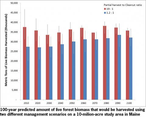 Erin Simons-Legaard: Hundred Year Predicted Benefits of Including Clearcutting in Management of Maine's Forests